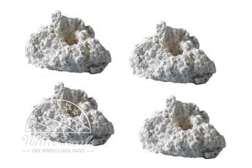 Ablegersteine 10 Stück