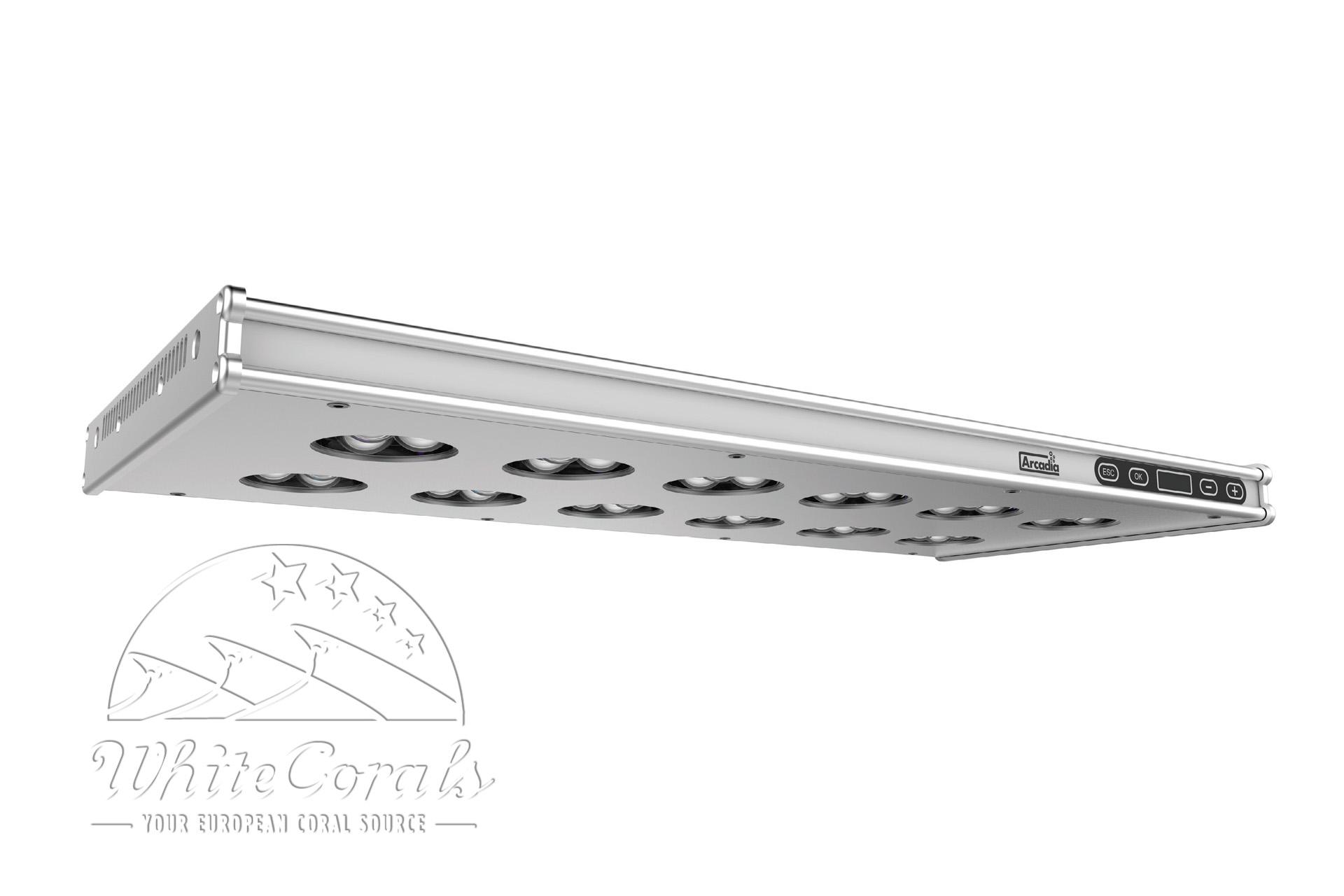 Arcadia Series 6 LED Marine 176W 560mm