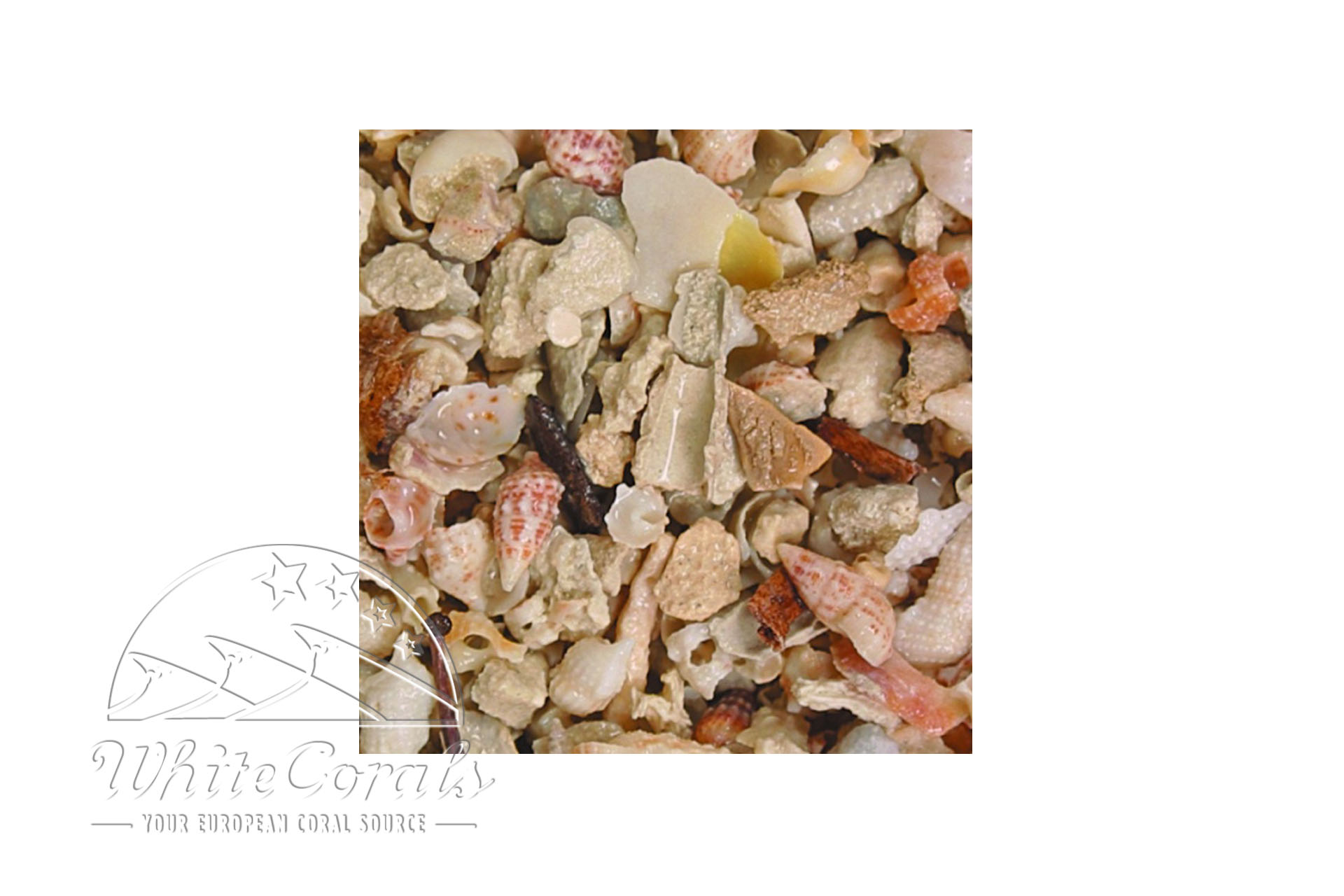 CaribSea Seaflor Aruba Puka Shell Fine 8,16 kg Sand