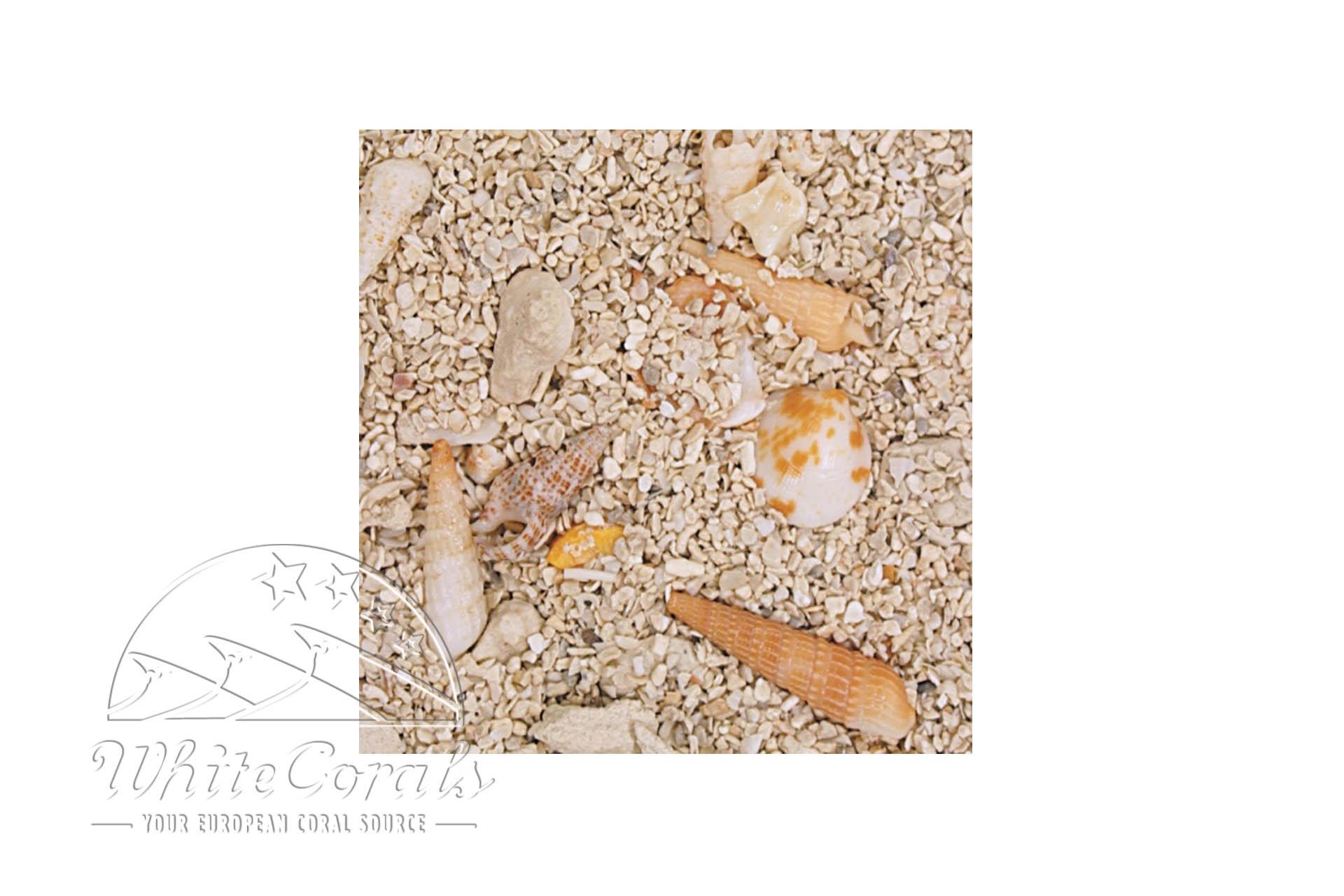 CaribSea Seaflor Super Reef 18,14 kg Sand