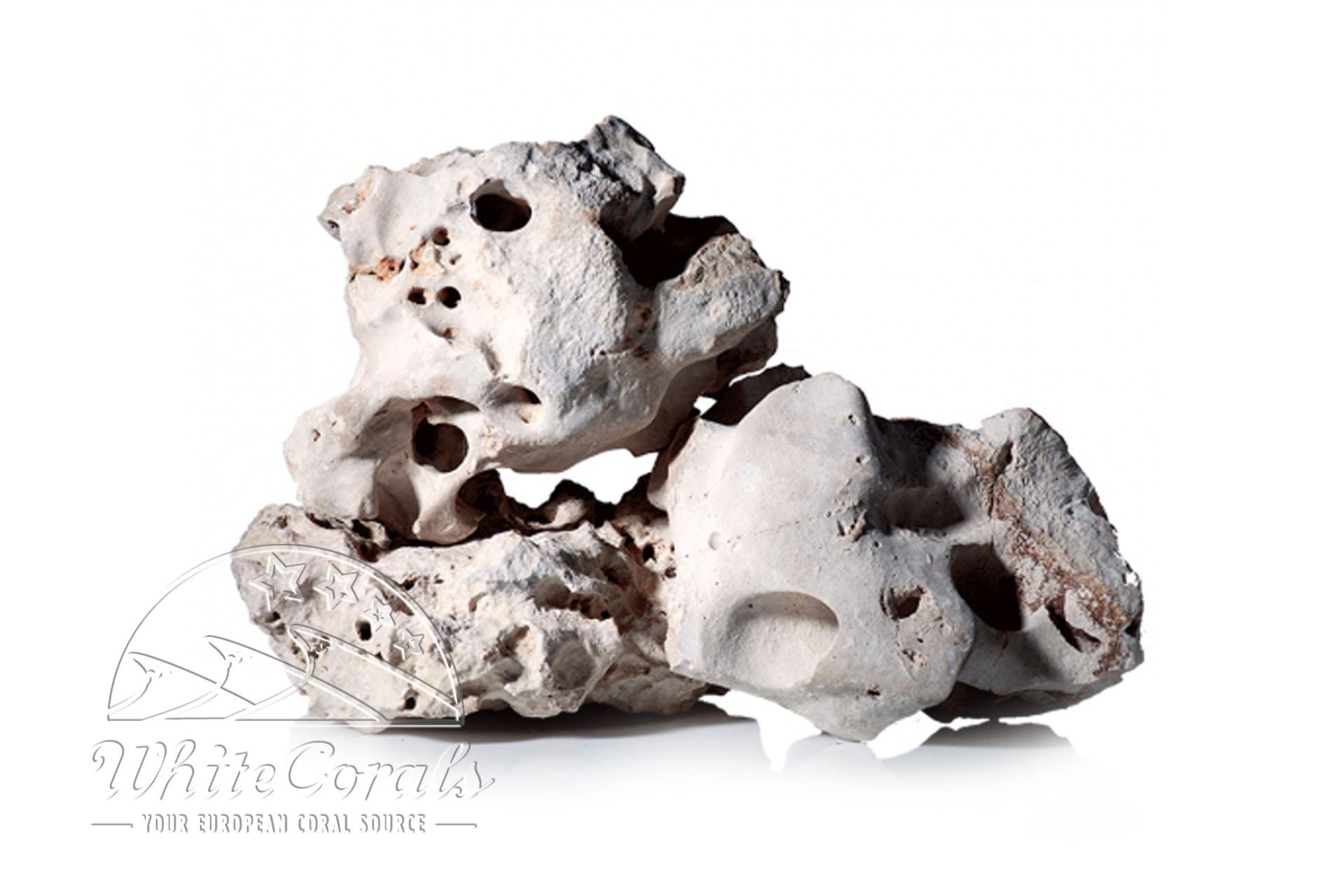 CaribSea Texas Holey Rock 18 kg Gestein