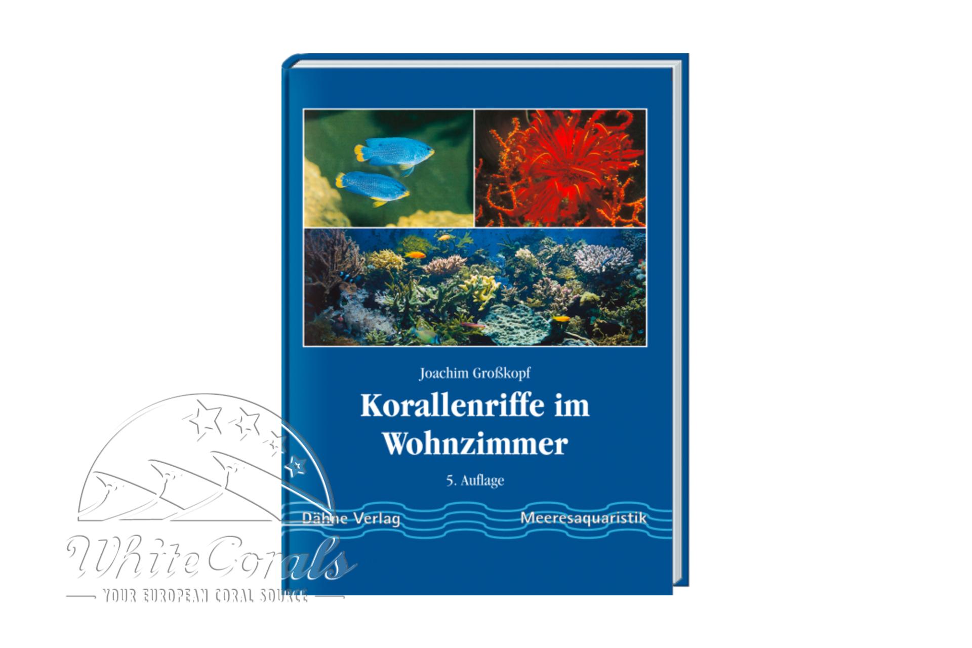 Korallenriffe im Wohnzimmer - Gro