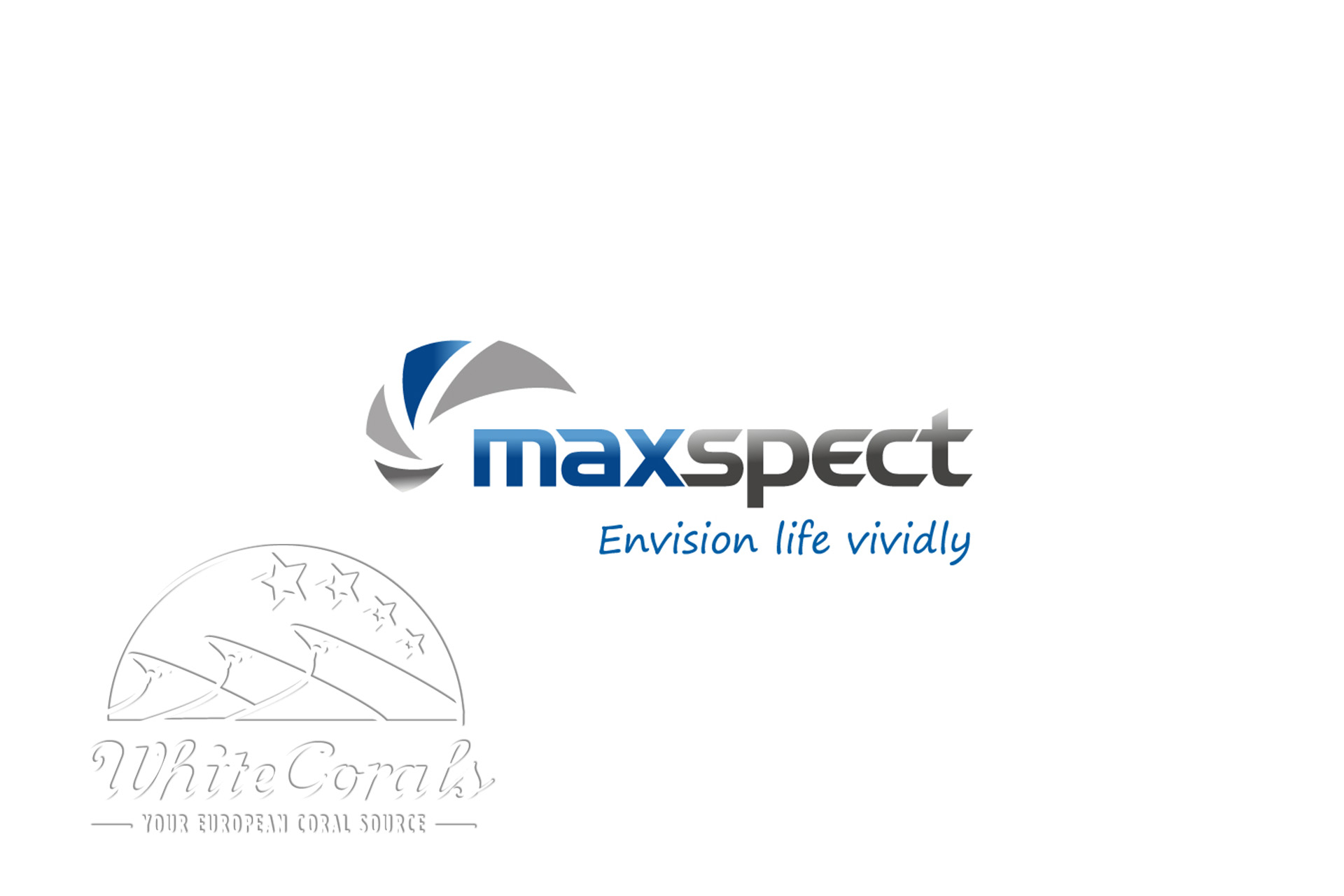 Maxspect Ethereal Hanging Kit Aufhängung