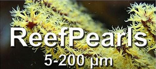 ReefPearls
